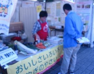 まるごと2012 .jpg