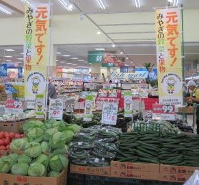 みやぎ野菜フェア 001.jpg