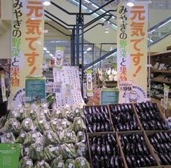 みやぎ野菜フェア(幸.jpg