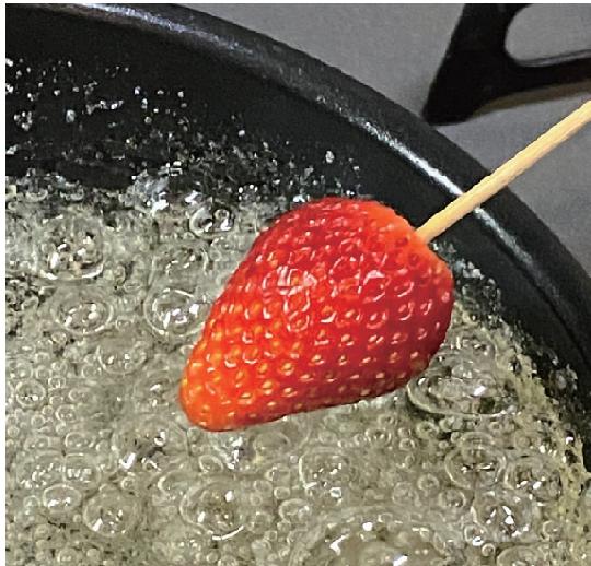 イチゴ飴・ミニトマト飴5.png