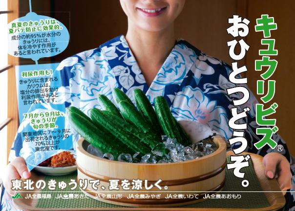キュウリビズポスター2012.7.JPG