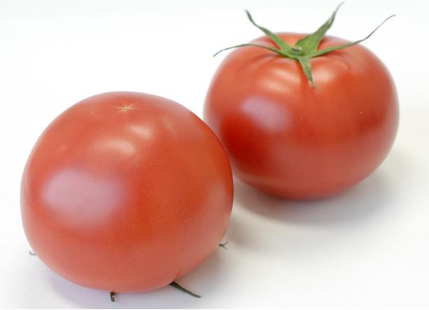 トマト写真.png