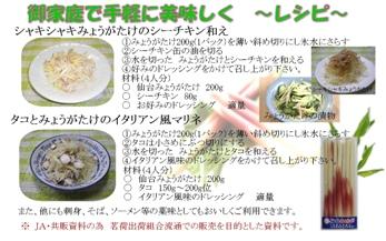 ミョウガレシピ.jpg