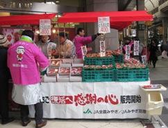 仙台いちご 宣伝会1.20-2.jpg