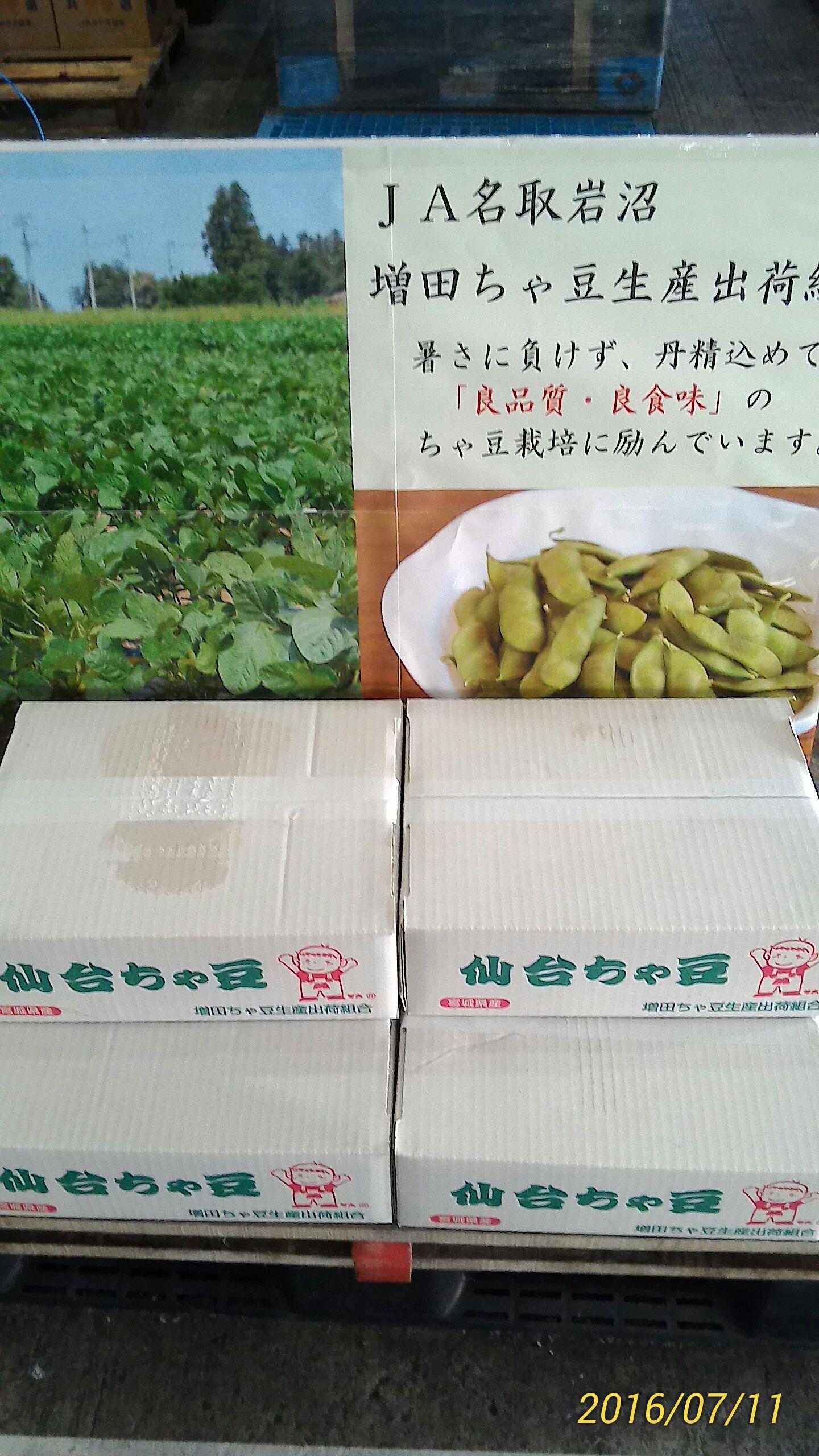 仙台市場茶豆宣伝会.jpg