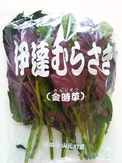 伊達むらさき (2).JPG