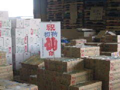 初競 2011市場 (6).jpg