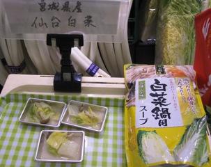宮城野菜祭り白菜試食.jpg