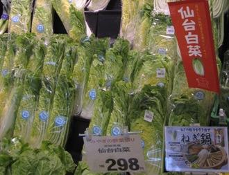宮城野菜祭り白菜.jpg