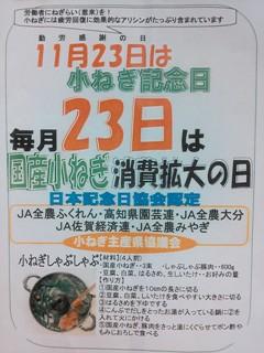 小ねぎPOP.JPG