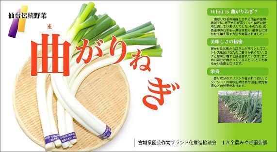 曲がりねぎポスター2011.1.jpg