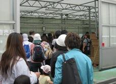 松島トマト収穫ハウス入場.jpg