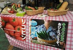 栗原市民祭り (2).JPG