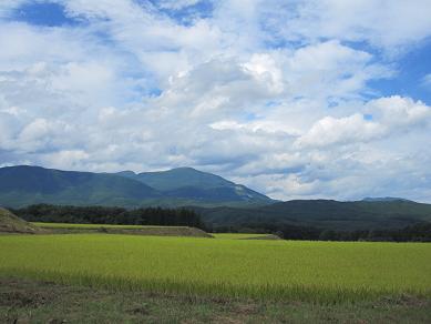 泉ヶ岳.jpg