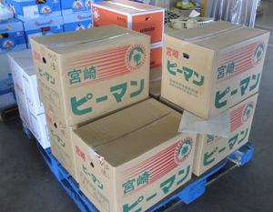 石巻青果 2012.5.8 (9).jpg