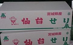 芹箱2014.9 (1).jpg