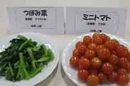 トマト、つぼみ菜.jpg