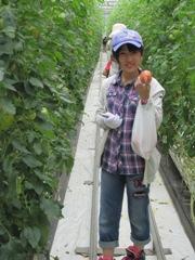 トマト収穫体験子供2.jpg