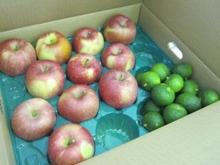 ベジフルさんま 柚とりんご.jpg
