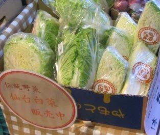 COCORON 仙台白菜.jpg