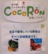 COCORON2012.3.14 (4).jpg
