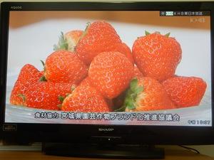 ナマイキテレビ.jpg