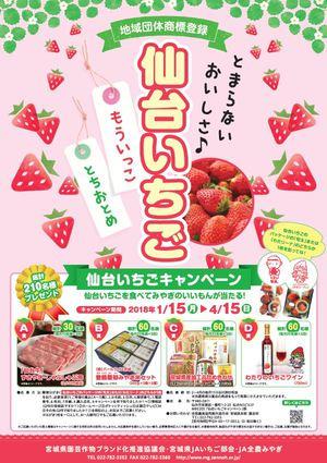キャンペーンポスター.JPG